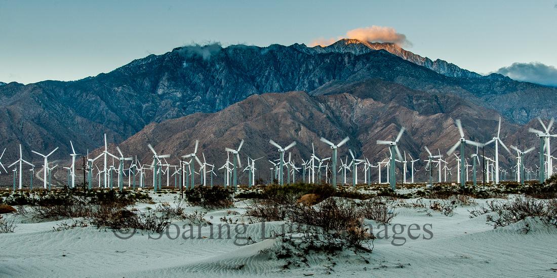 Desert Wind Generator Farm
